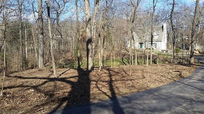 Pewaukee Tree Land Clearing